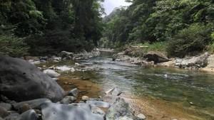 Mamoni_Valley