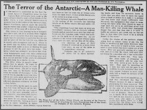 The Times Dispatch, Richmond, VA, Nov 16, 1913, Image 53